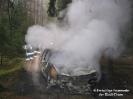 PKW Brand bei Höfen