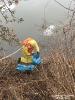 2017.02.18 Toter Schwan im Fluß Regen