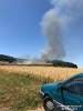 2019.07.06 Brand Stoppelfelder Streicherröhren
